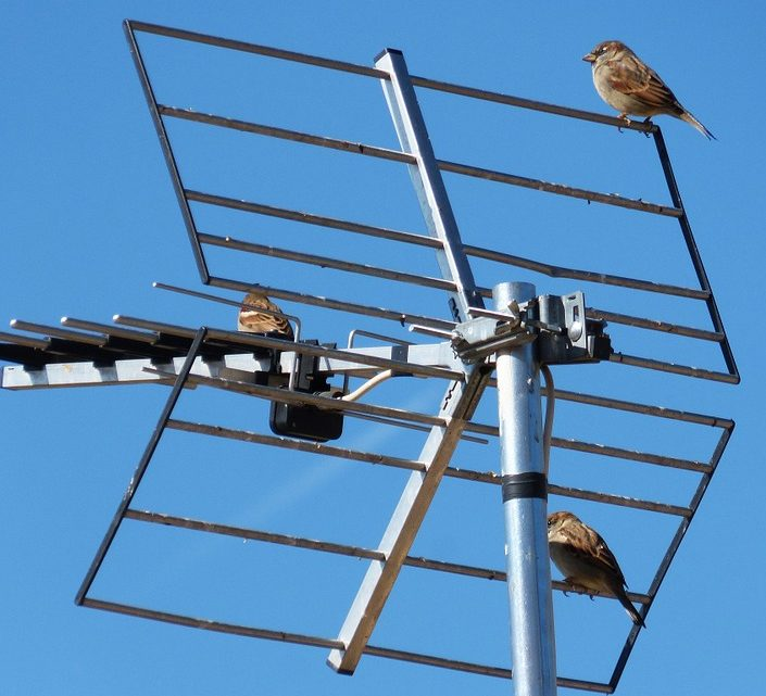 How The Installation Of The Antenna Varies From Type To Type